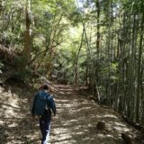 静岡の宇津ノ谷峠のハイキングルート詳細と感想