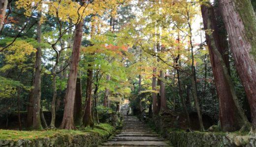 湖東三山「西明寺」秋の紅葉を見てきた感想
