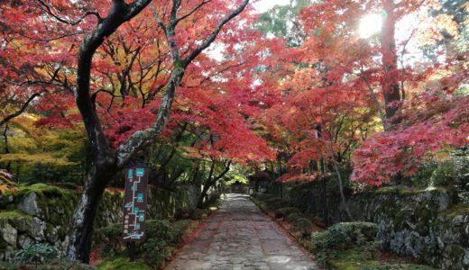 湖東三山の「金剛輪寺」秋の紅葉を見てきた感想