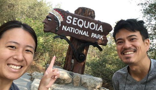 世界で一番大きな木があるセコイア国立公園を観光!