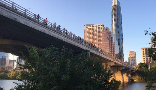 橋の下のコウモリ!テキサス州オースティン観光!